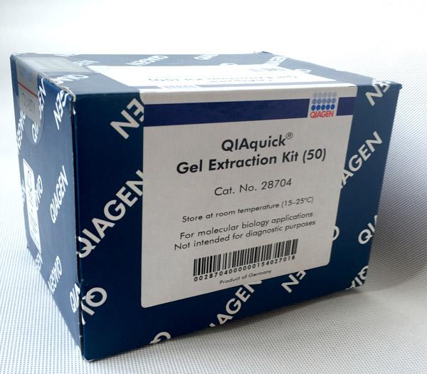 现货|QIAquick Gel Extraction Kit (50)